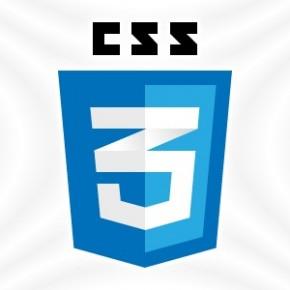 이미지 CSS 11가지